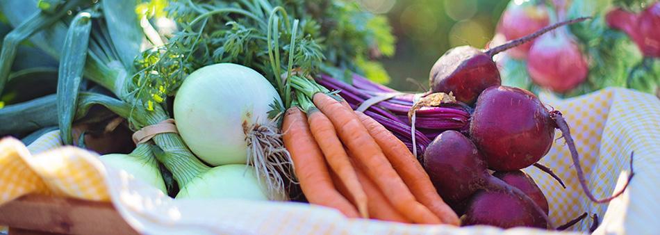 Végétaux colorés : des vitamines plein la vue !